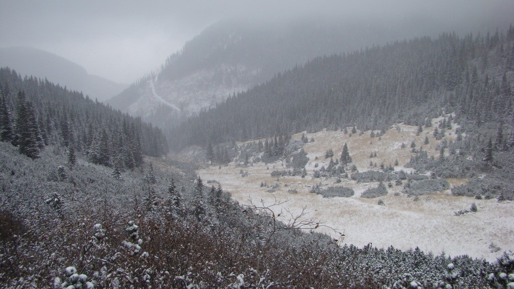 Imagine spre vf.Haitii prin ninsoare