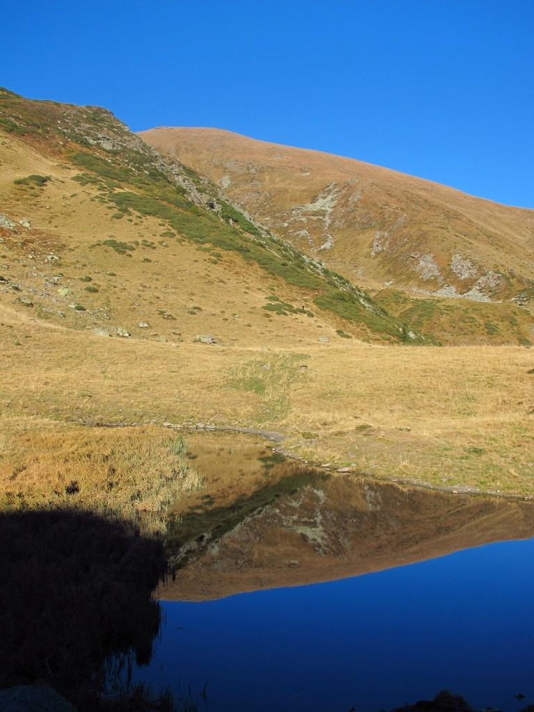 Ineutul in oglinda lacului