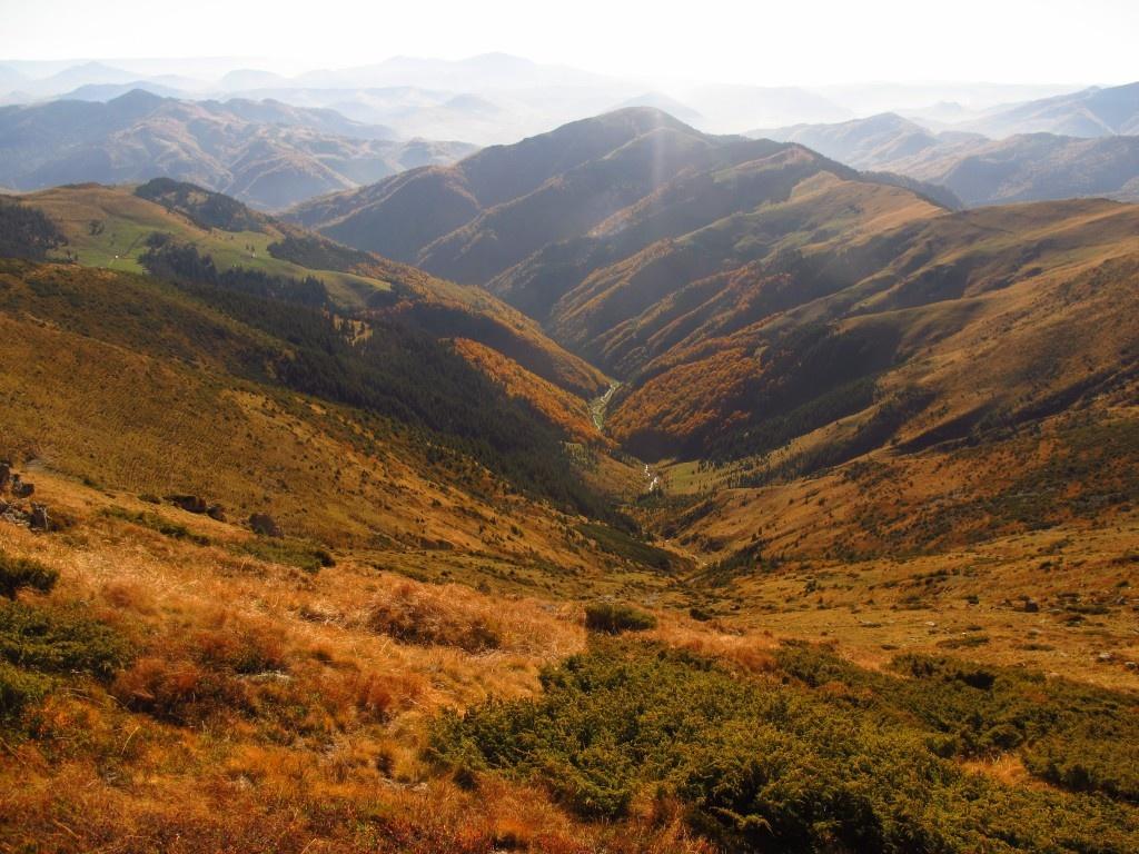 Valea Cobasel, vf Stanistea 1 478m si vf Capu Benesului 1 587m